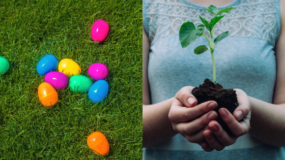 5 Spring Planting Tips & Easter Fun Facts