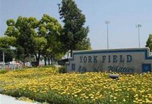 parks-york